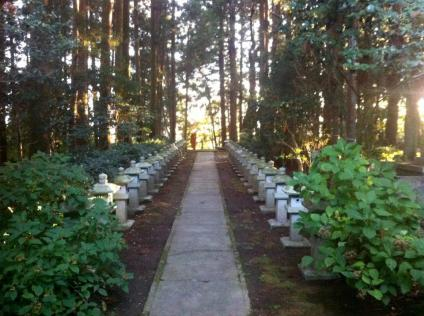 Dokei-ji Temple precincts in the Autumn light